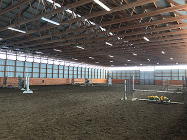 Tally Ho Equestrian Centre - Horse Boarding, Riding Lessons
